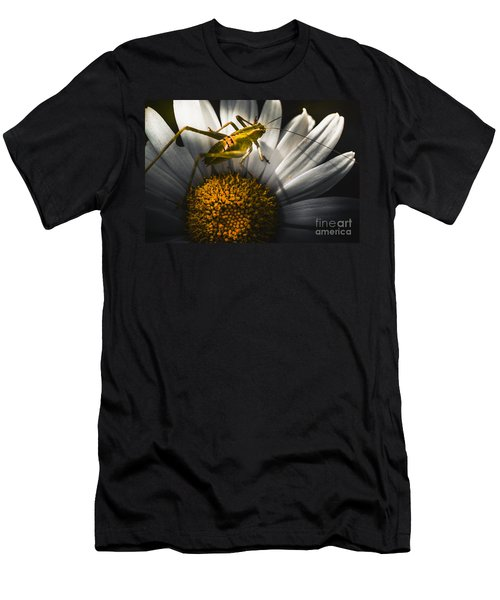 Australian Grasshopper On Flowers. Spring Concept Men's T-Shirt (Slim Fit) by Jorgo Photography - Wall Art Gallery