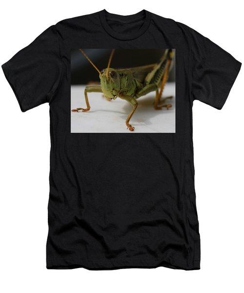 Grasshopper Men's T-Shirt (Slim Fit) by Dan Sproul