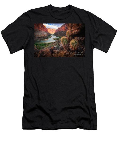 Nankoweap Cactus Men's T-Shirt (Slim Fit) by Inge Johnsson