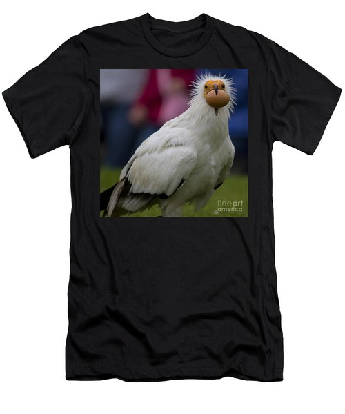Pharaos Chicken 2 Men's T-Shirt (Slim Fit) by Heiko Koehrer-Wagner