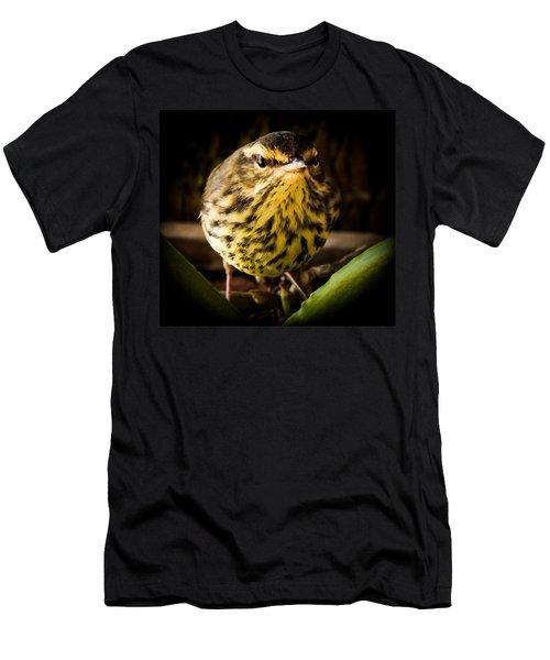 Round Warbler Men's T-Shirt (Slim Fit) by Karen Wiles