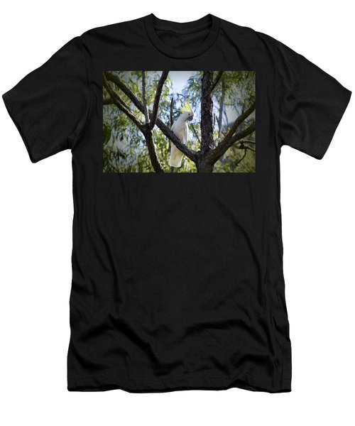 Sulphur Crested Cockatoo Men's T-Shirt (Slim Fit) by Douglas Barnard