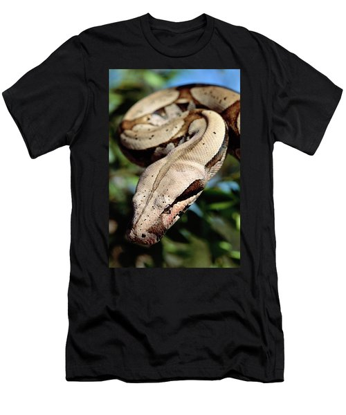 Boa Constrictor Boa Constrictor Men's T-Shirt (Slim Fit) by Claus Meyer
