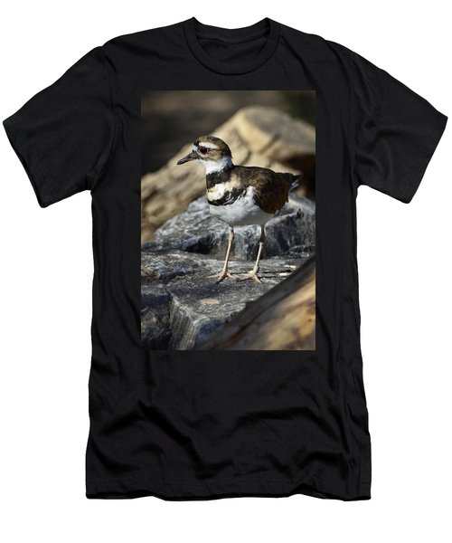 Killdeer Men's T-Shirt (Slim Fit) by Saija  Lehtonen