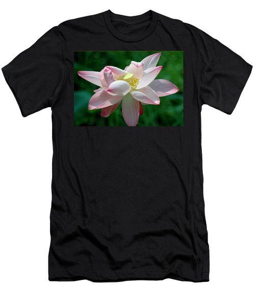 Pink Attraction Men's T-Shirt (Slim Fit) by LeeAnn McLaneGoetz McLaneGoetzStudioLLCcom