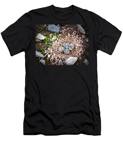Killdeer Nest Men's T-Shirt (Slim Fit) by Cricket Hackmann