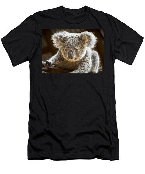 Koala Kid Men's T-Shirt (Slim Fit) by Jamie Pham