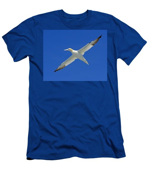 Northern Gannet Men's T-Shirt (Slim Fit) by Tony Beck