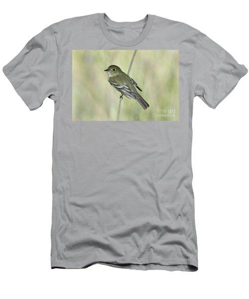 Acadian Flycatcher Men's T-Shirt (Slim Fit) by Anthony Mercieca