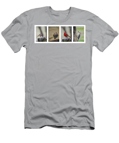 Backyard Bird Set Men's T-Shirt (Slim Fit) by Heather Applegate