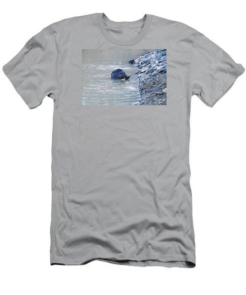 Beaver Chews On Stick Men's T-Shirt (Slim Fit) by Chris Flees