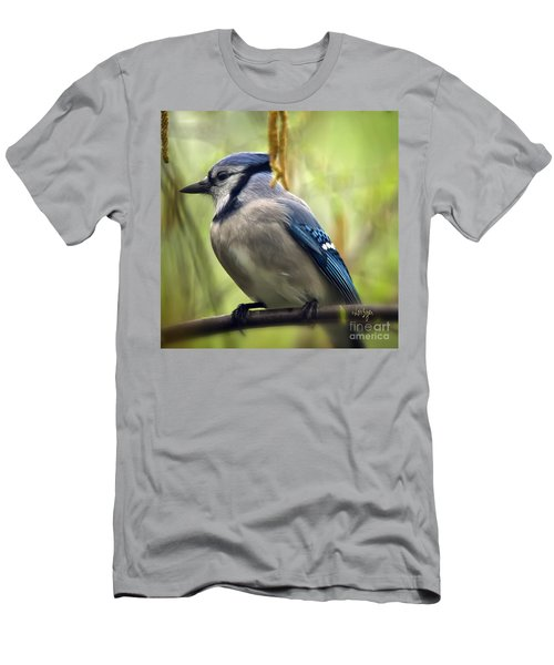 Blue Jay On A Misty Spring Day - Square Format Men's T-Shirt (Slim Fit) by Lois Bryan