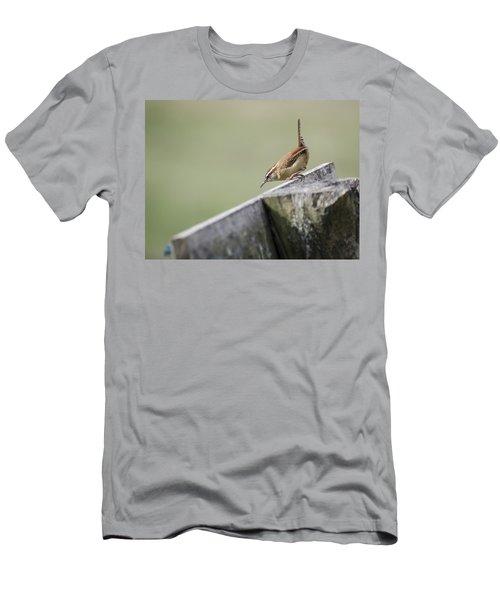 Carolina Wren Two Men's T-Shirt (Slim Fit) by Heather Applegate
