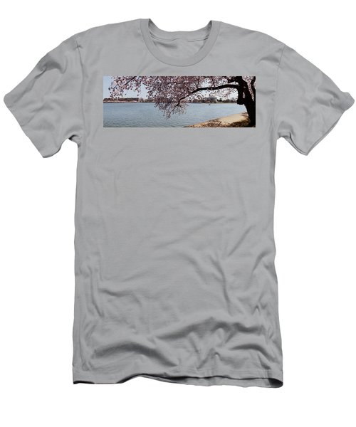 Cherry Blossom Trees With The Jefferson Men's T-Shirt (Slim Fit) by Panoramic Images