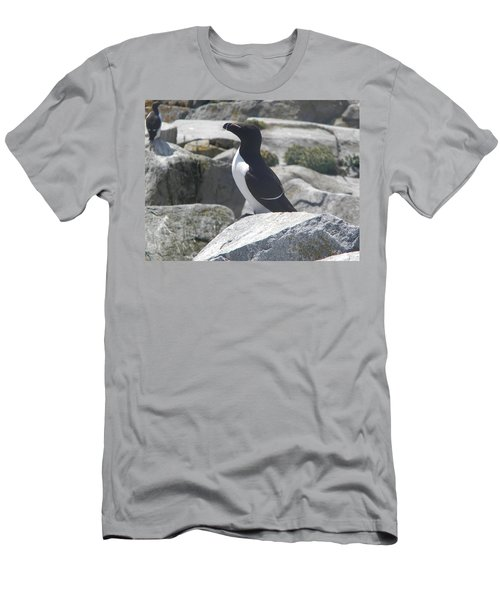 Razorbill Men's T-Shirt (Slim Fit) by James Petersen