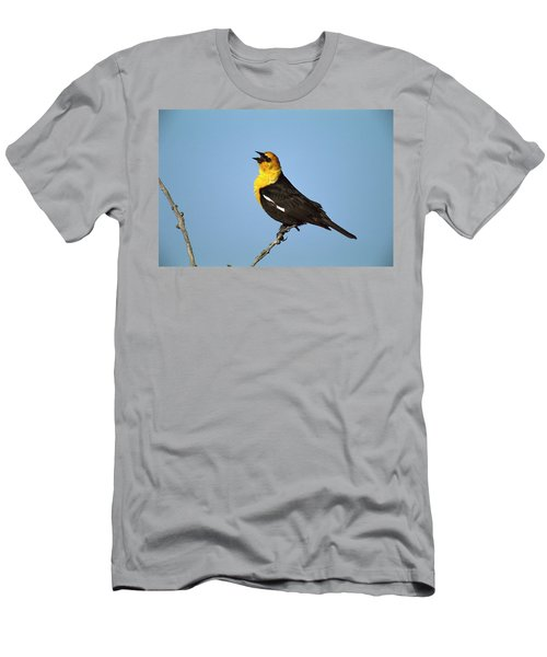 Yellow-headed Blackbird Singing Men's T-Shirt (Slim Fit) by Tom Vezo