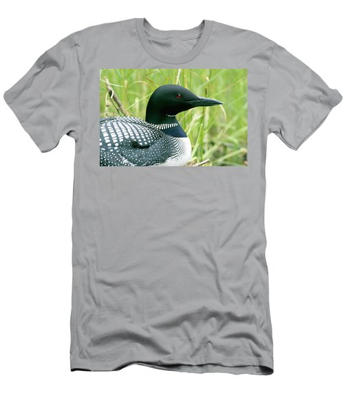Common Loon, La Mauricie National Park Men's T-Shirt (Slim Fit) by Philippe Henry