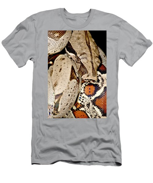 Boa Constrictor Men's T-Shirt (Slim Fit) by Dant� Fenolio