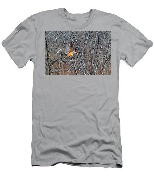 American Woodcock In Takeoff Flight Men's T-Shirt (Slim Fit) by Asbed Iskedjian