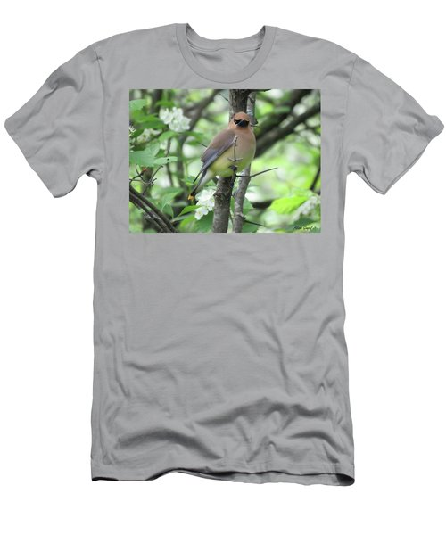 Cedar Wax Wing Men's T-Shirt (Slim Fit) by Alison Gimpel