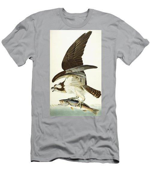 Fish Hawk Men's T-Shirt (Slim Fit) by John James Audubon