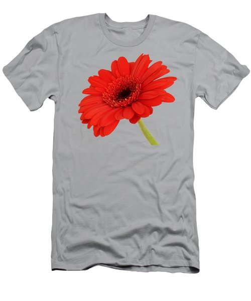 Red Gerbera Daisy 2 Men's T-Shirt (Slim Fit) by Scott Carruthers
