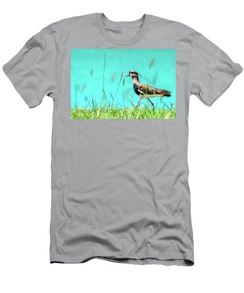 Southern Lapwing Men's T-Shirt (Slim Fit) by Randy Scherkenbach