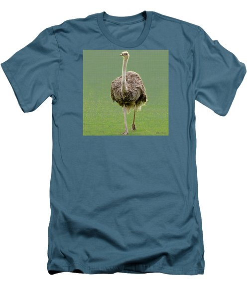 Emu Men's T-Shirt (Slim Fit) by Ellen Henneke