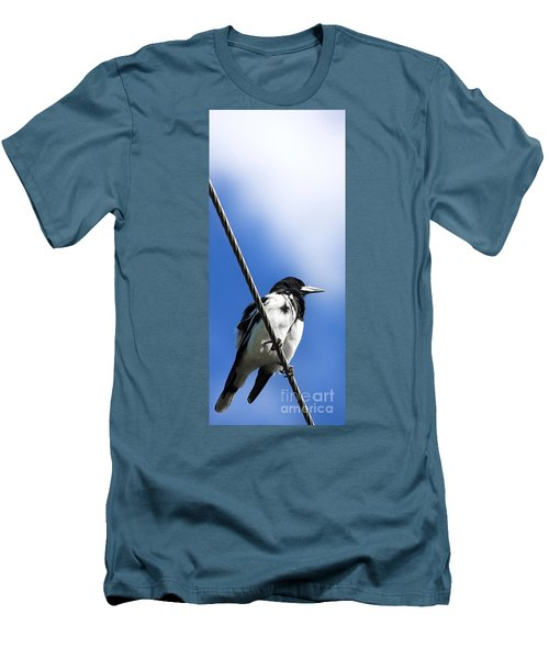 Magpie Up High Men's T-Shirt (Slim Fit) by Jorgo Photography - Wall Art Gallery