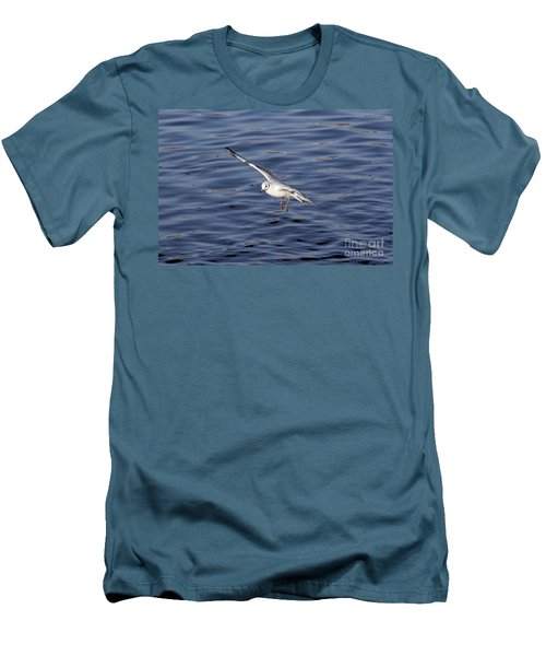 Flying Gull Men's T-Shirt (Slim Fit) by Michal Boubin