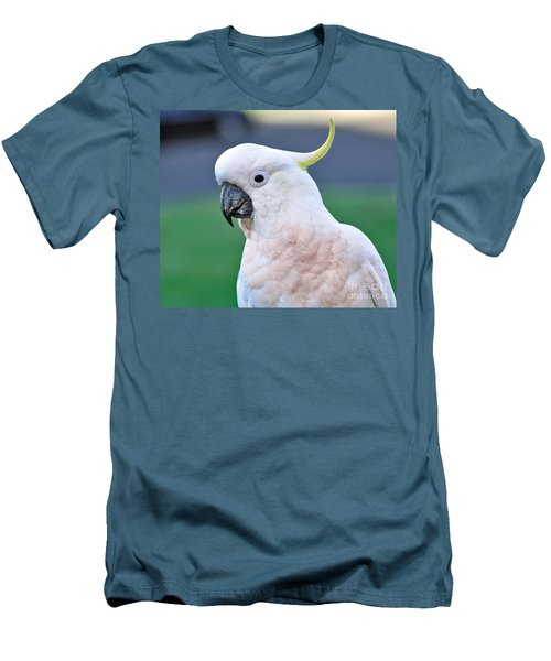 Australian Birds - Cockatoo Men's T-Shirt (Slim Fit) by Kaye Menner