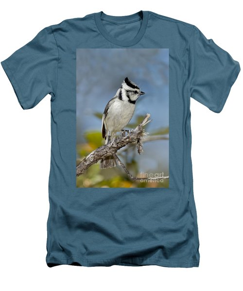 Bridled Titmouse Men's T-Shirt (Slim Fit) by Anthony Mercieca