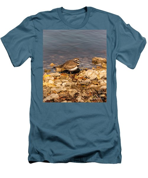 Kildeer On The Rocks Men's T-Shirt (Slim Fit) by Robert Frederick