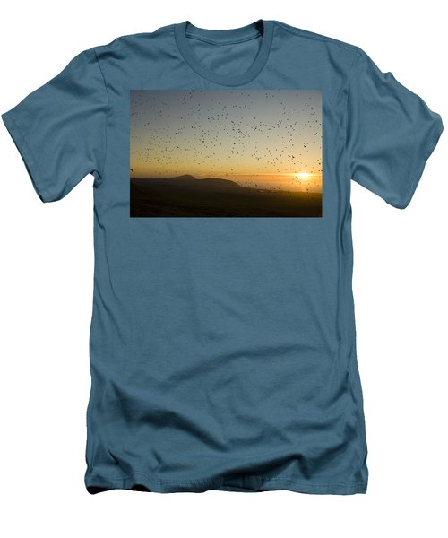Least Auklets, Returning To Their Nest Men's T-Shirt (Slim Fit) by Brian Guzzetti