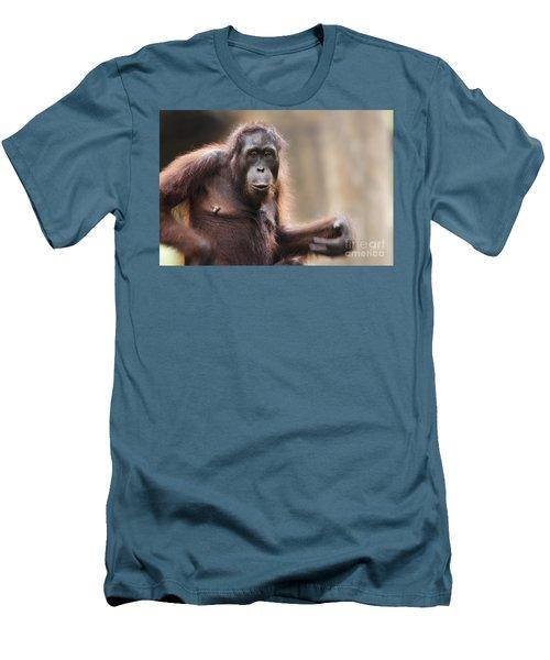 Orangutan Men's T-Shirt (Slim Fit) by Richard Garvey-Williams