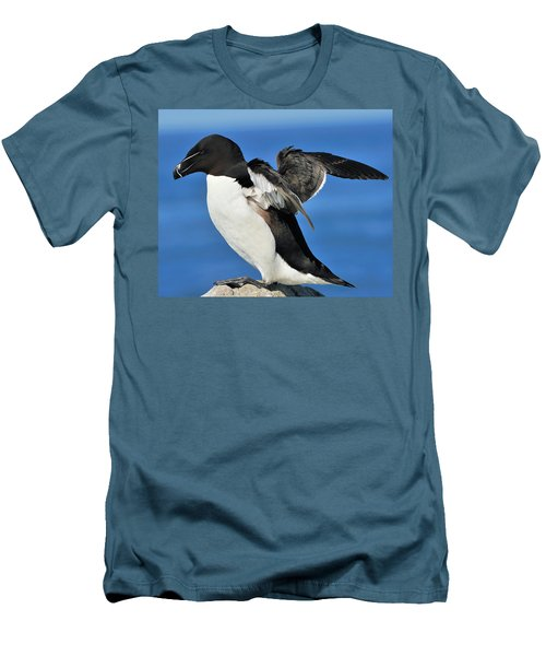 Razorbill Men's T-Shirt (Slim Fit) by Tony Beck