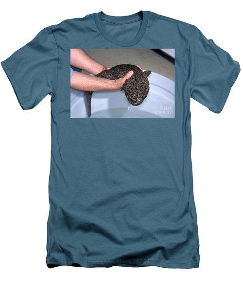 Chinese Giant Salamander Men's T-Shirt (Slim Fit) by Dante Fenolio