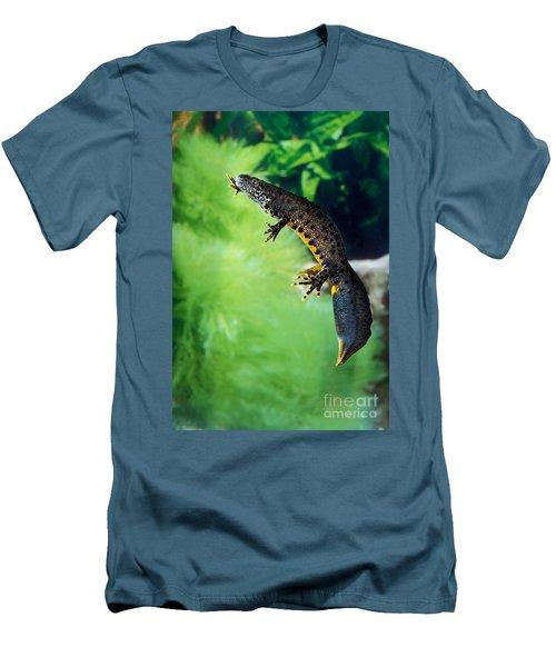 Alpine Newt Triturus Alpestris Men's T-Shirt (Slim Fit) by Gerard Lacz