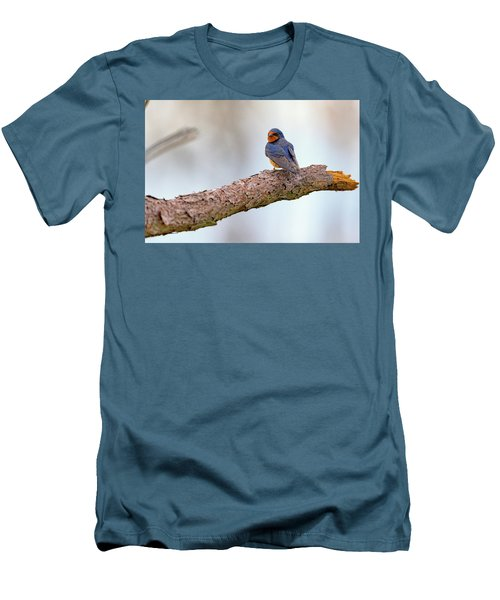 Barn Swallow On Assateague Island Men's T-Shirt (Slim Fit) by Rick Berk