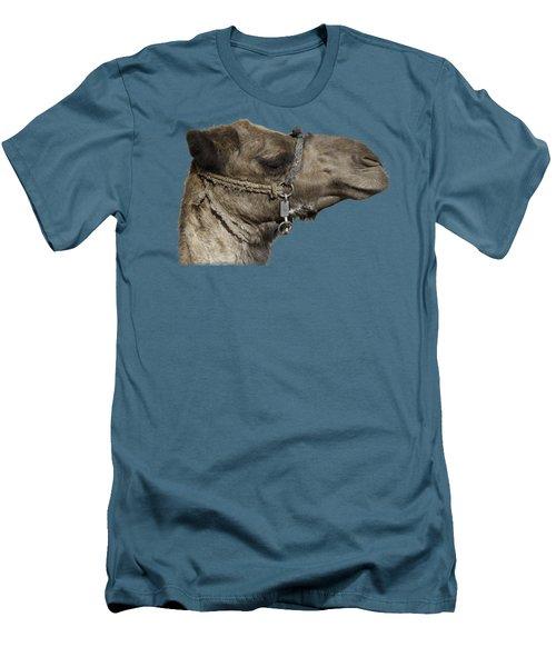 Camel's Head Men's T-Shirt (Slim Fit) by Roy Pedersen