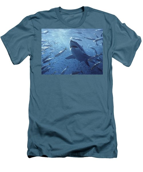 Great White Shark Carcharodon Men's T-Shirt (Slim Fit) by Mike Parry