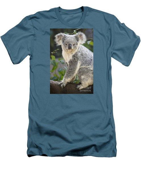 Koala Female Portrait Men's T-Shirt (Slim Fit) by Jamie Pham