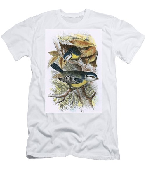 Blue Titmouse Men's T-Shirt (Slim Fit) by English School