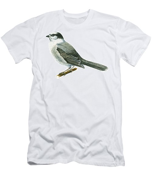 Canada Jay Men's T-Shirt (Slim Fit) by Anonymous