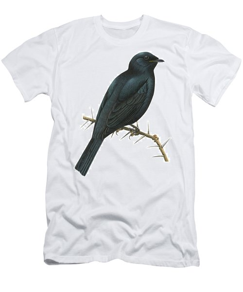 Cuckoo Shrike Men's T-Shirt (Slim Fit) by Anonymous