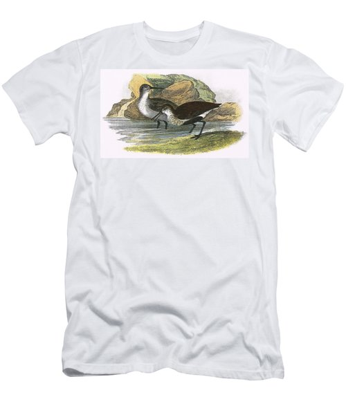 Dunlin Men's T-Shirt (Slim Fit) by English School