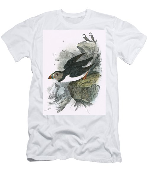 Puffin Men's T-Shirt (Slim Fit) by English School