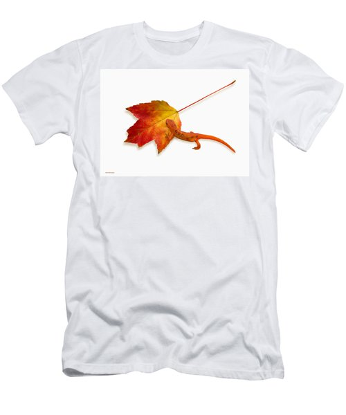 Red Spotted Newt Men's T-Shirt (Slim Fit) by Ron Jones