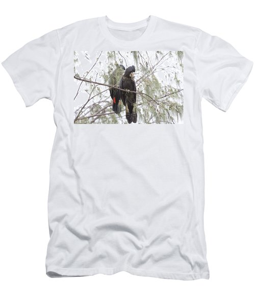 Red Tailed Black Cockatoos Men's T-Shirt (Slim Fit) by Douglas Barnard