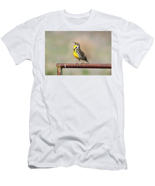 A Morning Song Men's T-Shirt (Slim Fit) by Michael Morse
